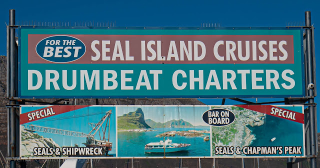 Seal Island Cruises  Hout Bay Drumbeat Charters Cape Town