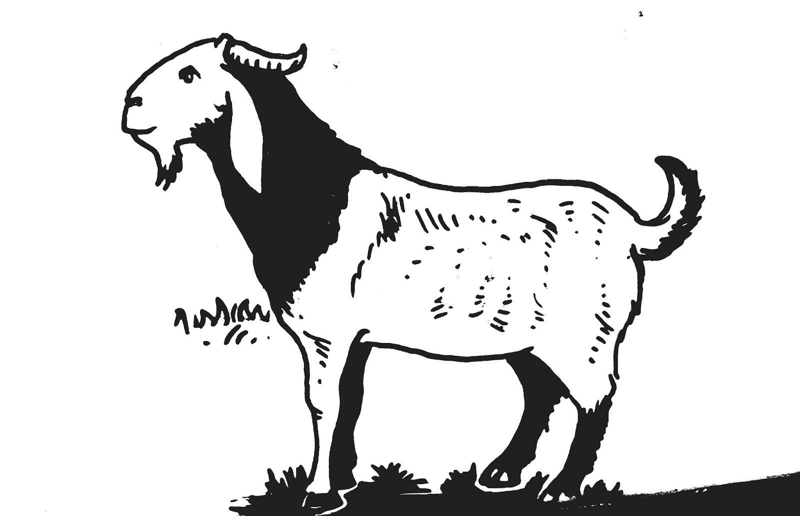 620 Koleksi Gambar Binatang Ternak Mewarnai Terbaik