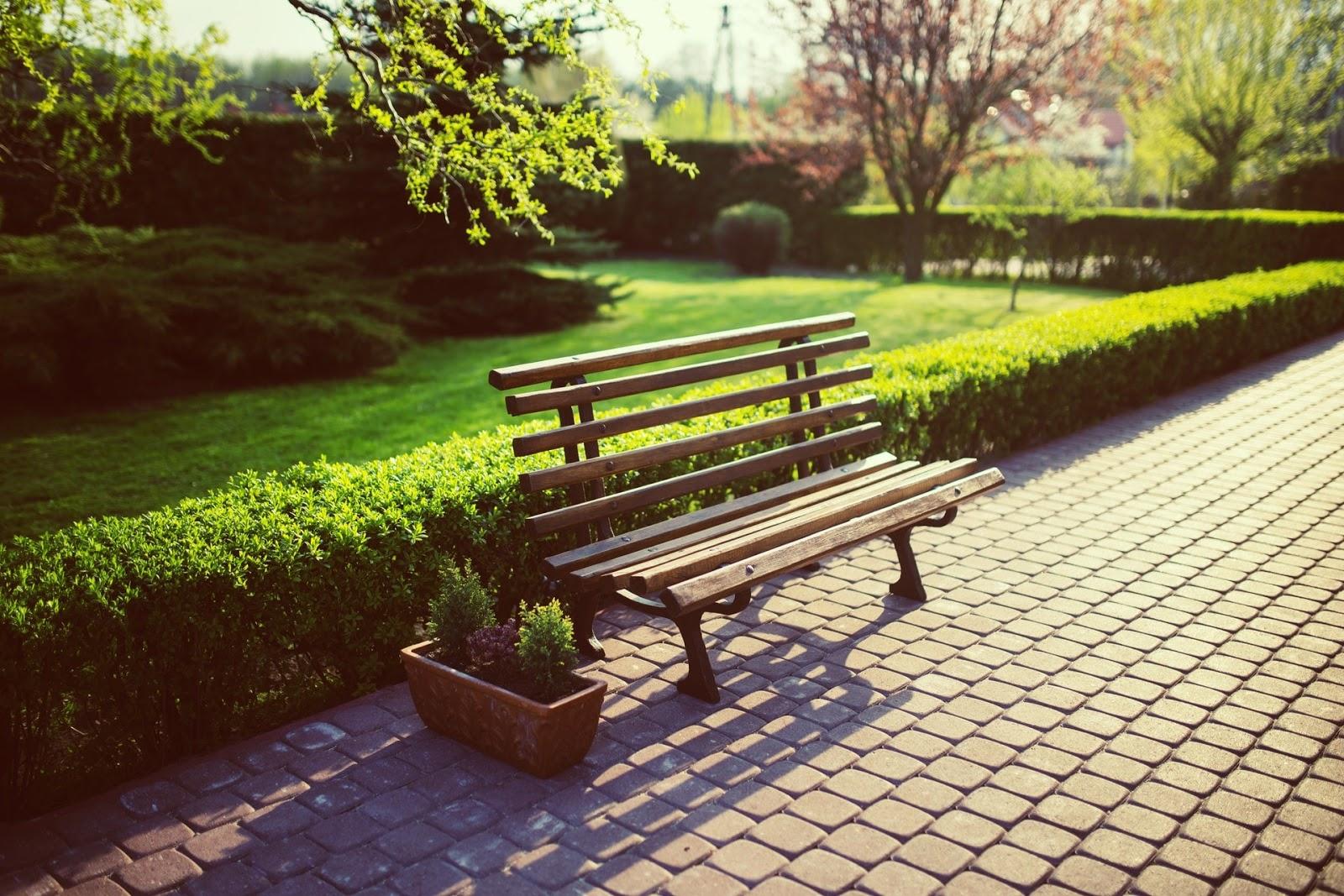 91+ Gambar Pemandangan Taman