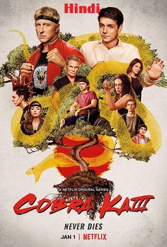 Cobra Kai Season 3 Hindi Dual Audio Download 480p & 720p All Episode
