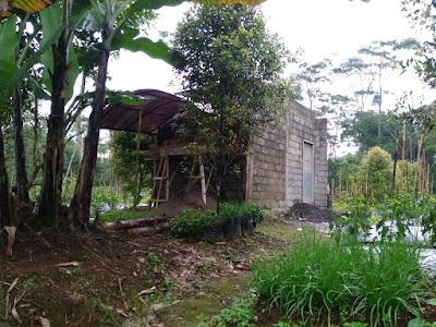 Building farm shed