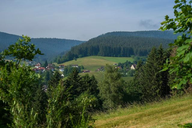 Premiumwanderweg Murgleiter | Etappe 5 von Baiersbronn zum Schliffkopf | Wandern nördlicher Schwarzwald 03