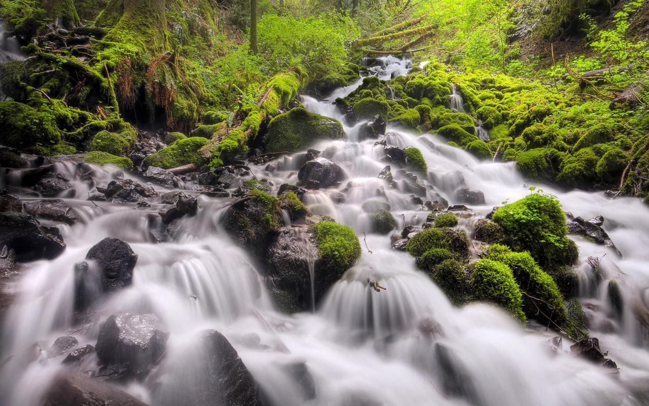 Fairy Falls Columbia River Gorge