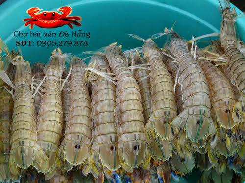 Bề bề tôm tít cung cấp sỉ và lẻ tại Đà Nẵng