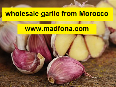 wholesale garlic from Morocco