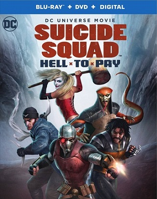 Suicide Squad Hell to Pay 2018 English 300MB BRRip ESubs 480p Full Movie Download Watch Online 9xmovies Filmywap Worldfree4u