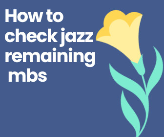 How to check jazz remaining mbs