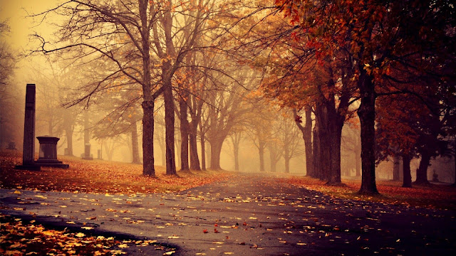 Hình nền mùa thu cho máy tính - Hình nền mùa thu lãng mạn