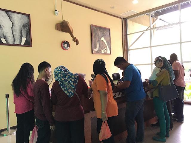 Pusat Konservasi Gajah Kebangsaan Kuala Gandah