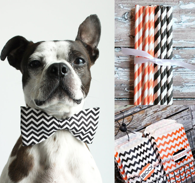 chevron halloween, cute dog bow tie, halloween decor, diy