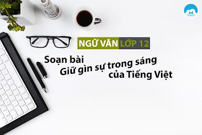 Hướng dẫn soạn bài Giữ gìn sự trong sáng của Tiếng Việt