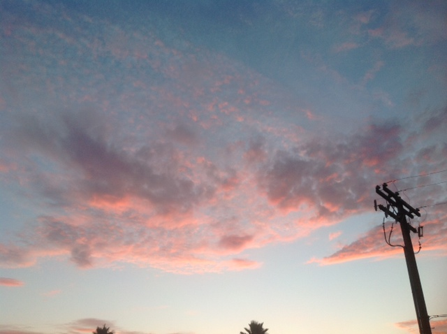 pink sky with overhead telephone lines
