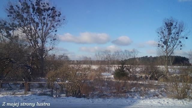 niebo mazury drzewa zima śnieg zima na mazurach