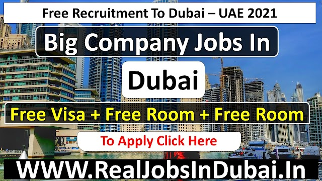 Al Naboodah Careers Jobs Opportunities In UAE - 2021