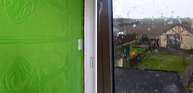 Bright green paint on a wall and snow hitting a window