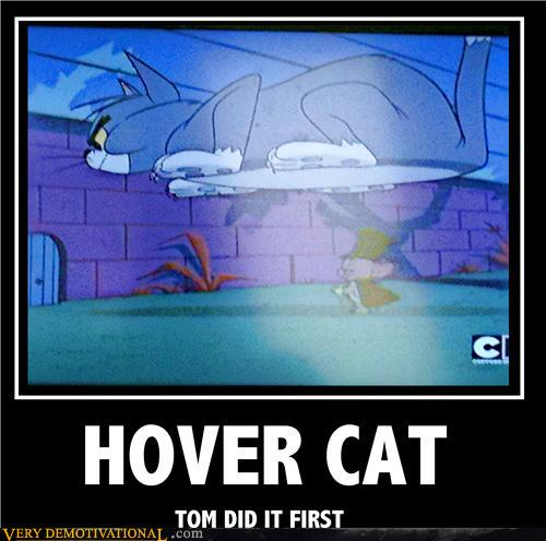 photo trick: hover cats original pictures, gif and posters