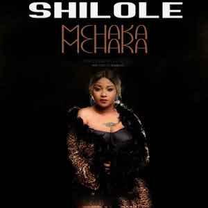 Download. Mp3 | Shilole - Mchaka Mchaka