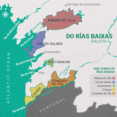 albarino and rias biaxes wines