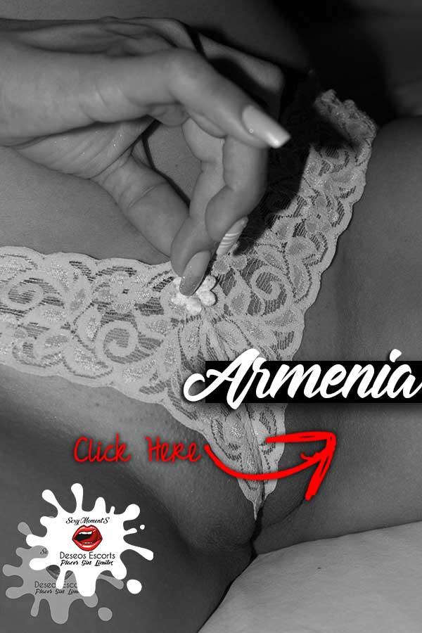 catalogo armenia