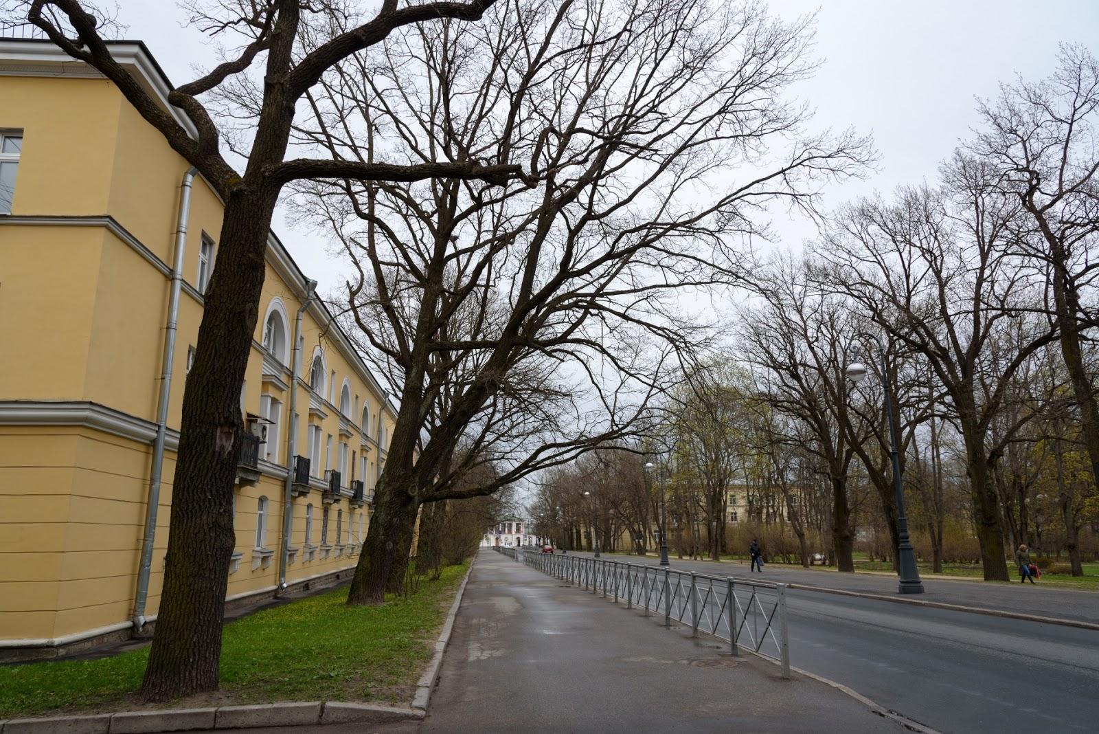 Улица Широкая. Пушкин