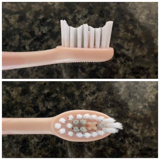 Ordo Sonic+ Electric Toothbrush Review