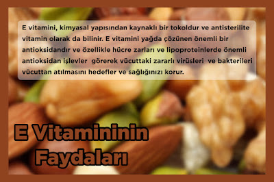 E Vitamininin Faydaları