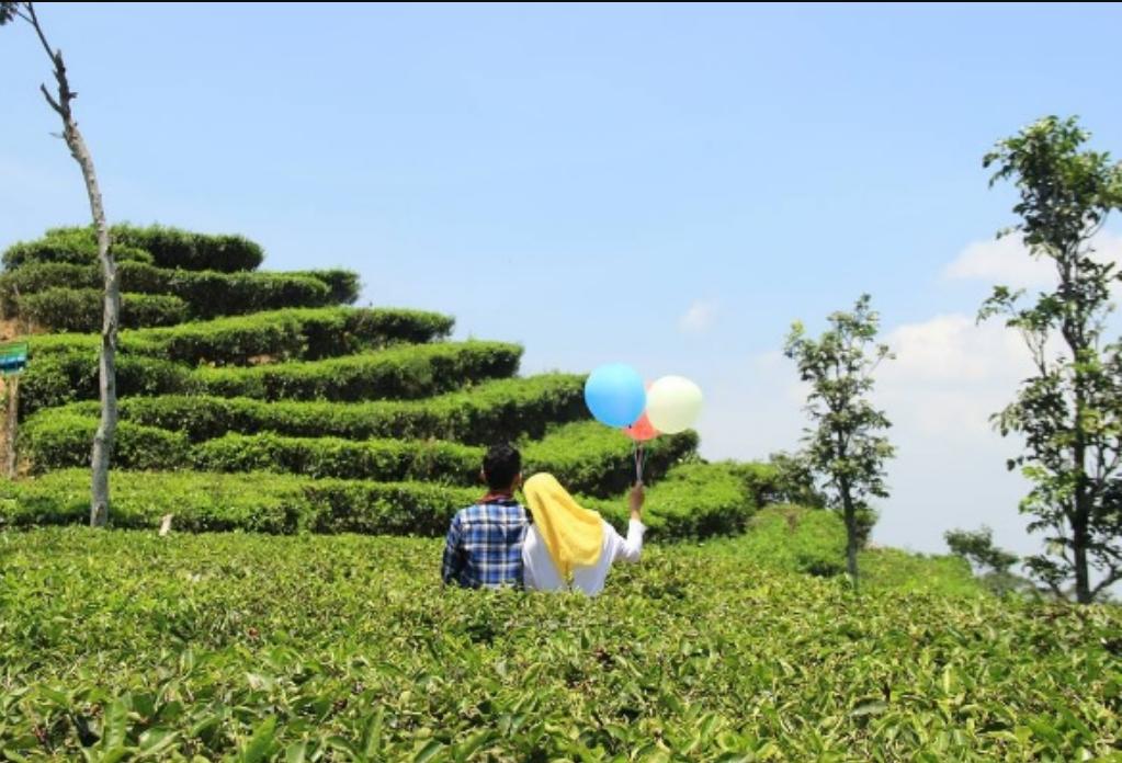 8 Hal Unik Yang Buat Kamu Jatuh Cinta Sama Yogyakarta