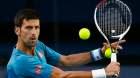 Australian Open: Novak Djokovic, Serena Williams impart stage to record man Ivo Karlovic
