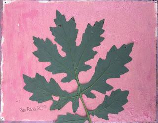 Solarfast prints_Sue Reno_Image 1