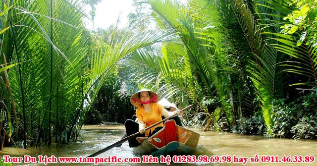 Chủ trương sắp thu phí tham quan rừng dừa Bảy Mẫu ở Thành Phố Hội An