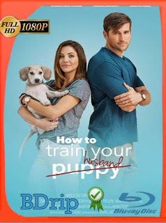 How to Train Your Husband (2018) BDRIP 1080p Latino [GoogleDrive] SilvestreHD