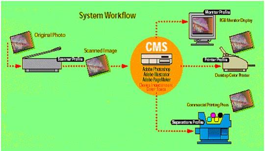 Digital Textile Printing Process