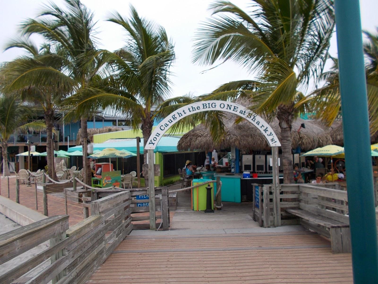 sharkys venice florida - photo#36