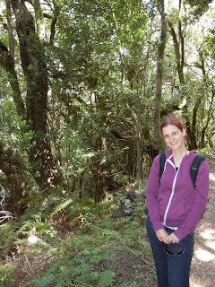 Parque Nacional de Garajonay, La Gomera