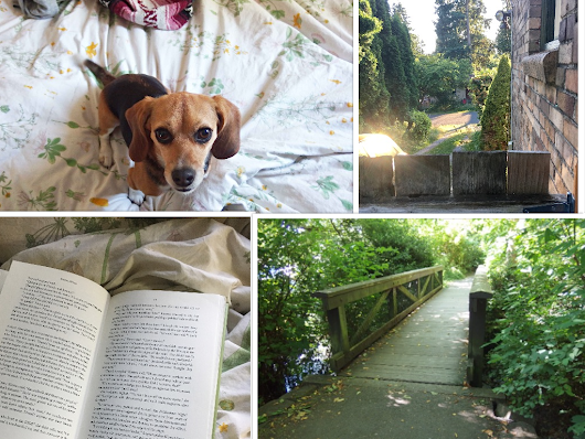 Dearlyintrovert: The Highlight of My Summer? House/Pup-Sitting!