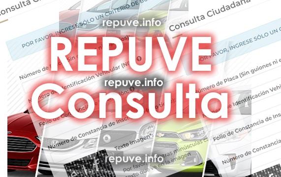 Formatos con Textos en Rojo de Repuve Consulta