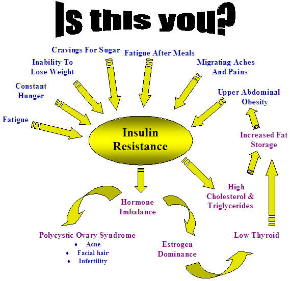 Insulin resistance is a vicious cycle