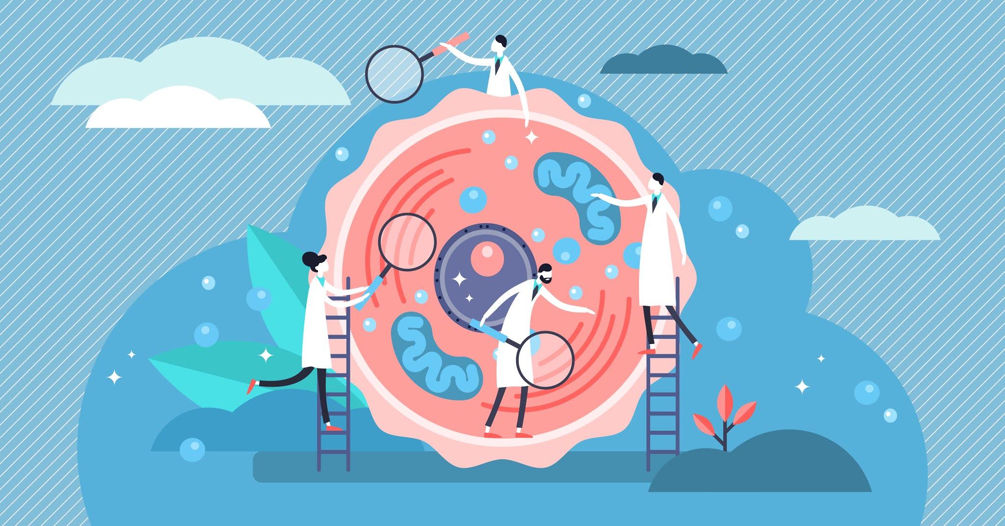 Innovador proyecto de investigación en la Escuela de Medicina de la USFQ accede a financiamiento internacional