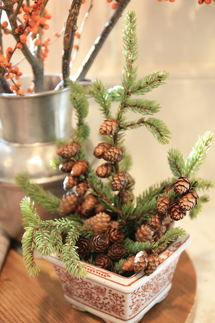 Jenny Steffens Hobick Mini Christmas Trees In Planters
