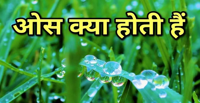ओस कैसे बनती है? How to make dew in Hindi