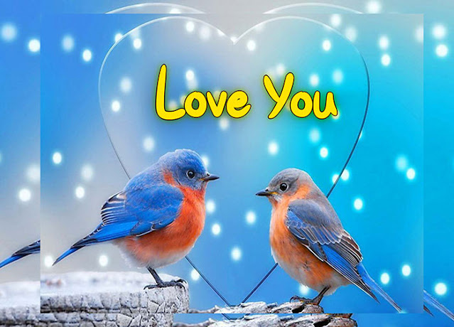 new good morning love images download