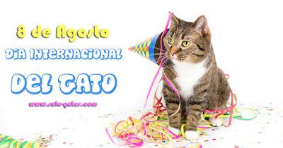 8 de agosto : Día Internacional del Gato