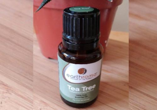 Tea Tree Oil reverse cavities