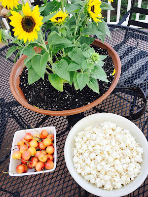 Popcorn and cherries with sunflowers photo