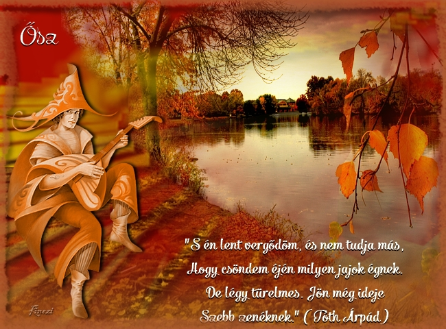 szép őszi idézetek Kinszi Böngészde: Őszi idézetek képeken /2014