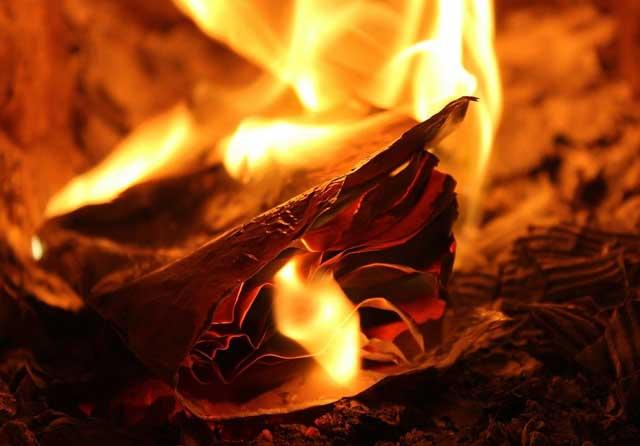 Pembakaran Buku dan Penindasan Pemikiran