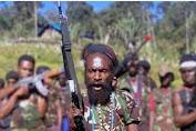 Kelompok Teroris Lekagak Talenggen Terdesak, Kapolda Papua: Sebaiknya Menyerahkan Diri