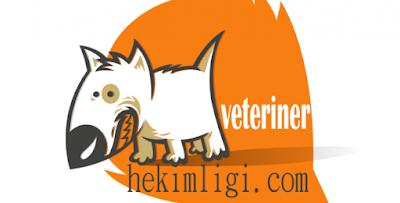 Online-Veteriner-İş-İmkanı