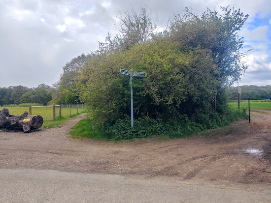 Take Hatfield bridleway 49 to the left of the hedge