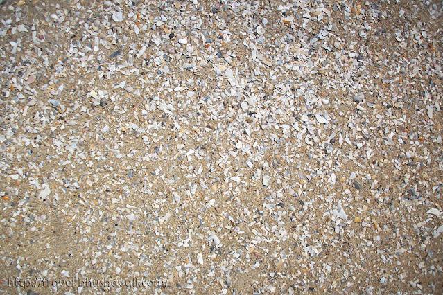 Pulicat Pazhaverkadu Beach Irukkam Island
